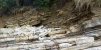 Les strates des falaises de la plage de Guéthary