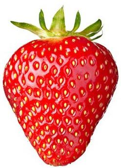 2013 année de la fraise