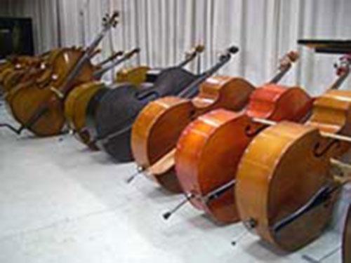 contrebasses
